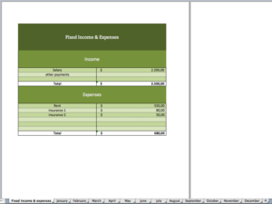 Overview of the budget-template in excel