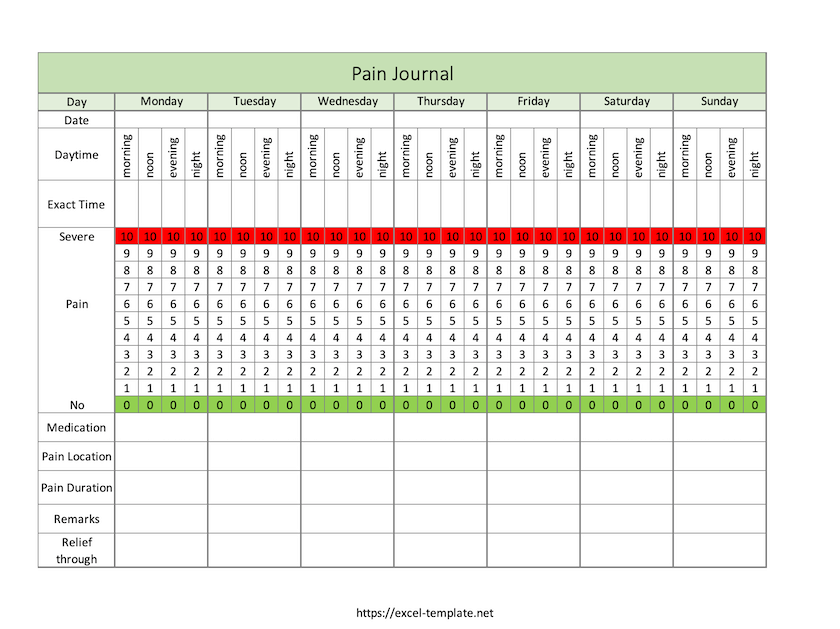 Pain Log Template for Excel (screenshot)